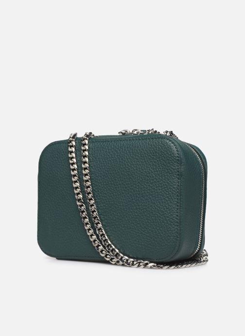 Handtaschen Lacoste CROCO CREW CUIR  CROSSOVER BAG grün ansicht von rechts