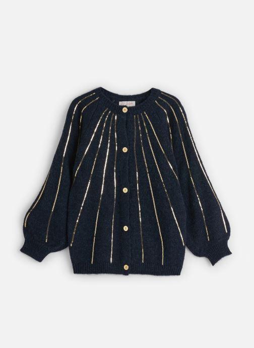 Vêtements Lili Gaufrette Gilet Tricot Bleu Marine à sequins dorés Bleu vue détail/paire