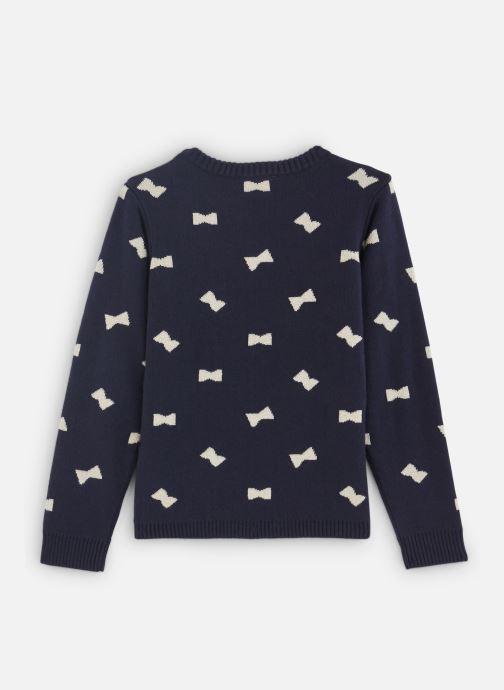 Vêtements Lili Gaufrette Pull Tricot Jacquard Réversible Bleu vue bas / vue portée sac