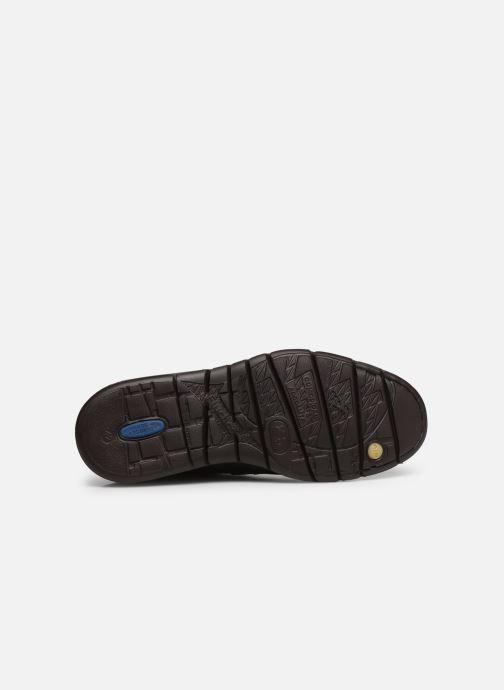 Zapatos con cordones Fluchos Celtic 0247 Marrón vista de arriba