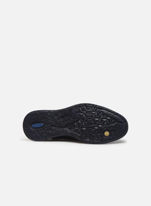 Lace-up shoes Fluchos Fenix 0235 Black view from above
