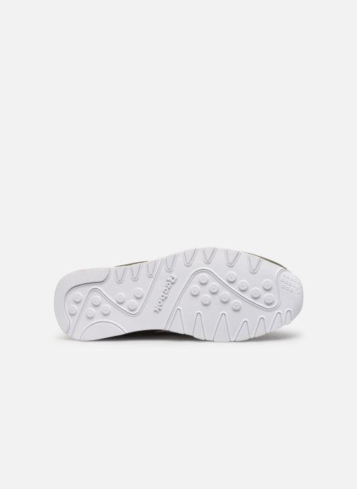 Sneakers Reebok Cl Nylon Mu Groen boven