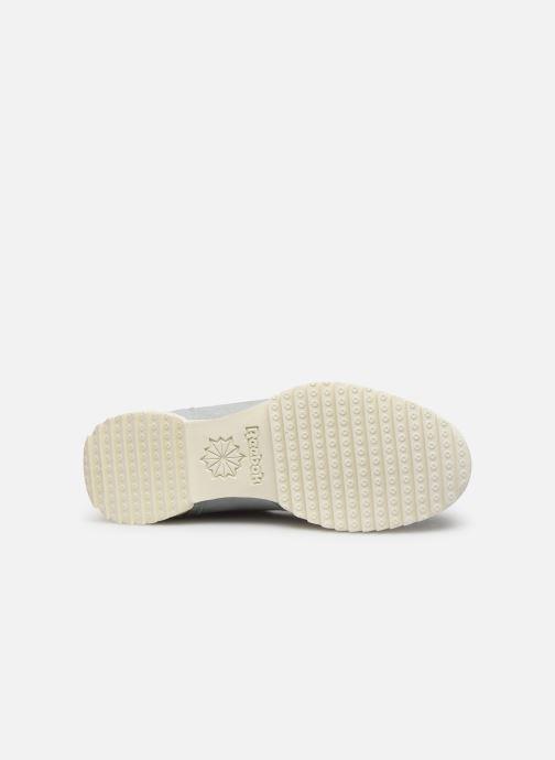 Sneakers Reebok Workout Clean Ripple Mu Azzurro immagine dall'alto
