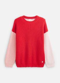 Vêtements Accessoires Pull Y15301