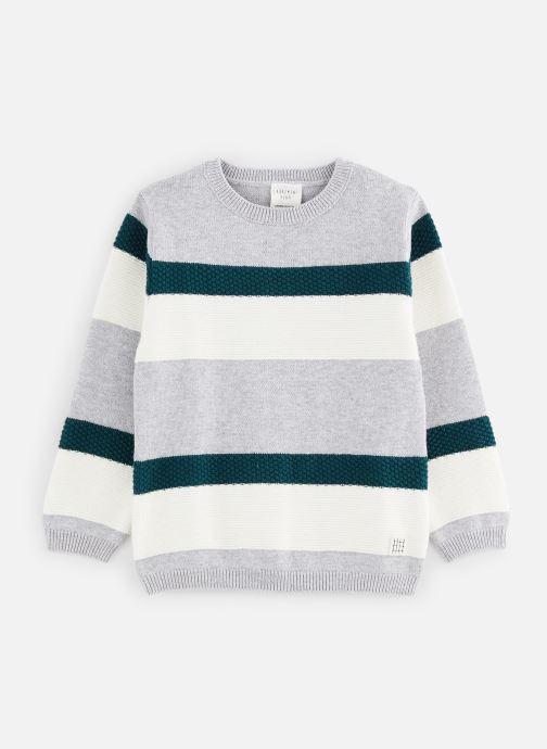 Vêtements CARREMENT BEAU Pull Y25274 Gris vue détail/paire
