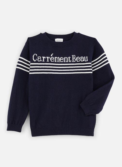 Vêtements CARREMENT BEAU Pull Y25275 Bleu vue détail/paire