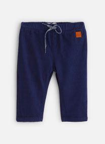 Pantalon legging et collant - Pantalon Y94140