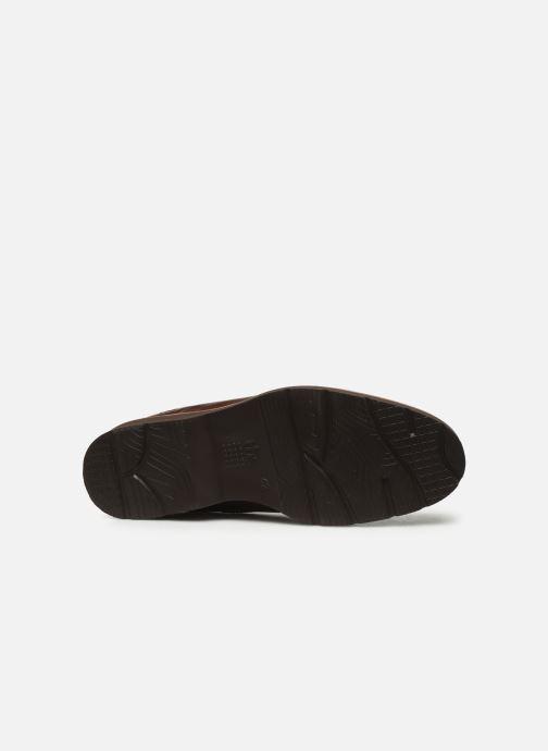 Zapatos con cordones TBS Painton Marrón vista de arriba