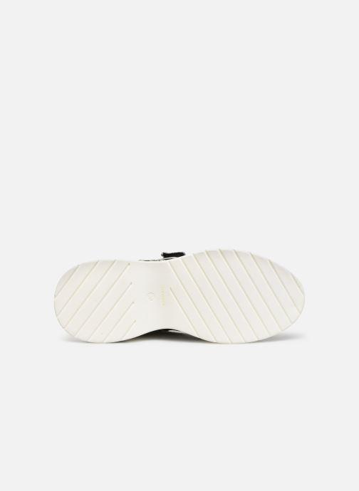 Sneaker COSMOPARIS HATSUKO/NEO schwarz ansicht von oben