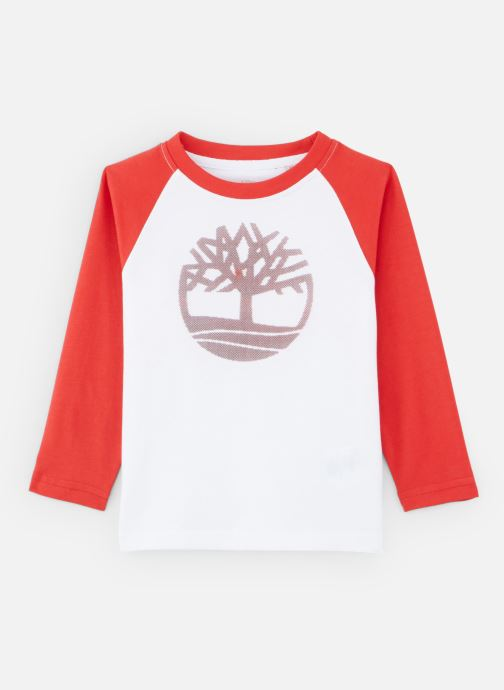 Kleding Timberland T-shirt T25Q16 Rood detail