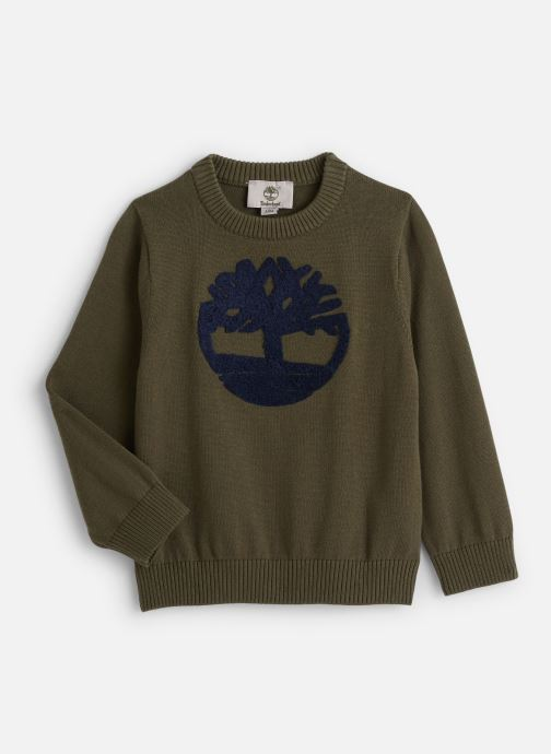 Vêtements Timberland T-shirt T25Q32 Vert vue détail/paire