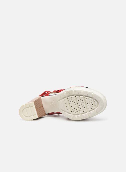 Sandali e scarpe aperte Geox D GINTARE B D827VB Rosso immagine dall'alto