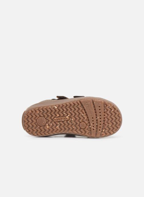 Sneakers Geox B Kilwi Boy x WWF Bruin boven