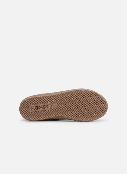 Sneaker Geox J Kalispera Girl x WWF braun ansicht von oben