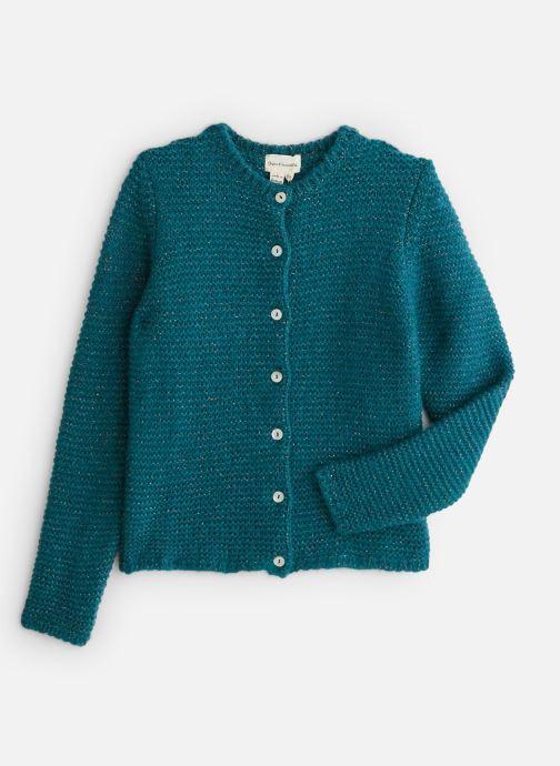 Vêtements Arsène et les Pipelettes Gilet Lurex Fille Vert vue détail/paire