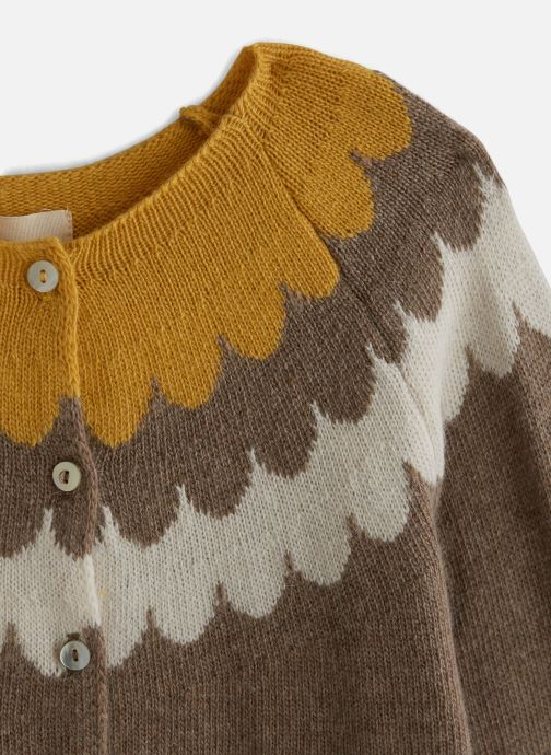 Kleding Arsène et les Pipelettes Cardigan  Vagues tricolore Bruin model