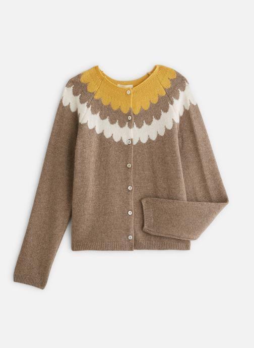 Kleding Arsène et les Pipelettes Cardigan  Vagues tricolore Bruin detail