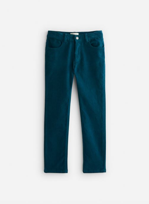 Vêtements Arsène et les Pipelettes Pantalon velours fin stretch Bleu vue détail/paire
