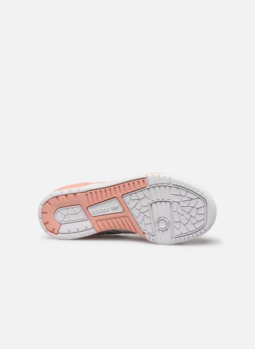 Sneakers adidas originals Rivalry Low J Bianco immagine dall'alto