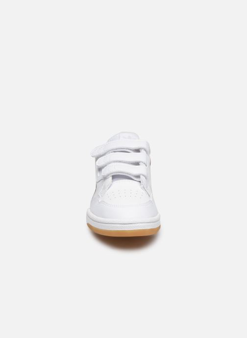 Sneakers adidas originals Continental 80 Cf C Hvid se skoene på