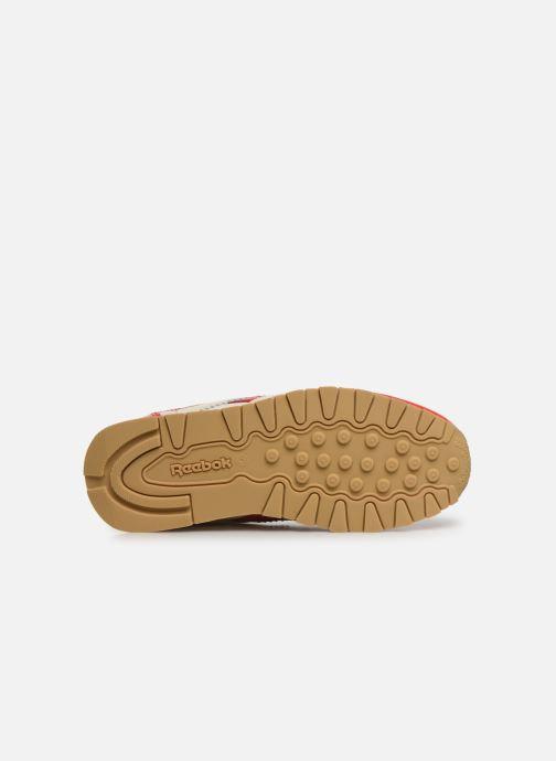 Sneakers Reebok Reebok x TAO Cl Nylon J Rood boven