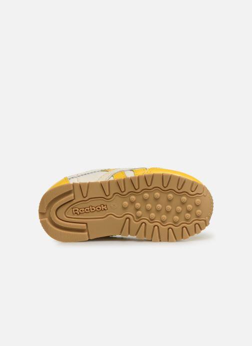 Sneakers Reebok Reebok x TAO Cl Nylon I Geel boven