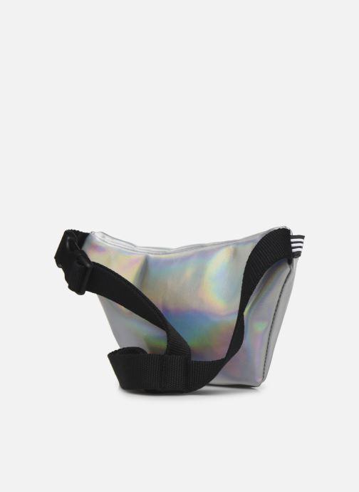 Portemonnaies & Clutches adidas originals WAISTBAG silber ansicht von rechts