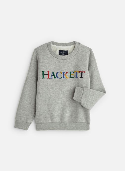 Vêtements Hackett London Multi Lg Swt Y Gris vue détail/paire