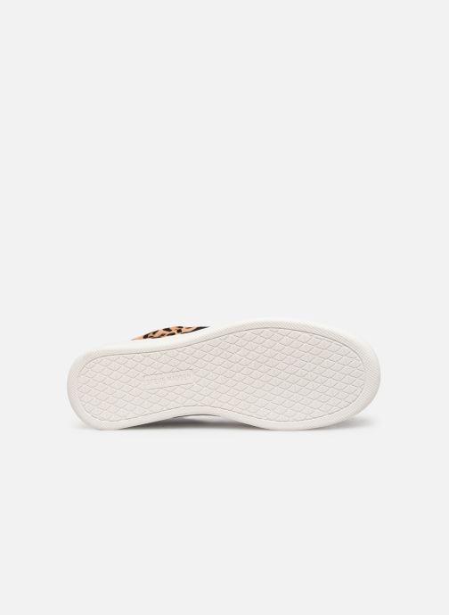 Sneakers Steve Madden BELLE Beige boven