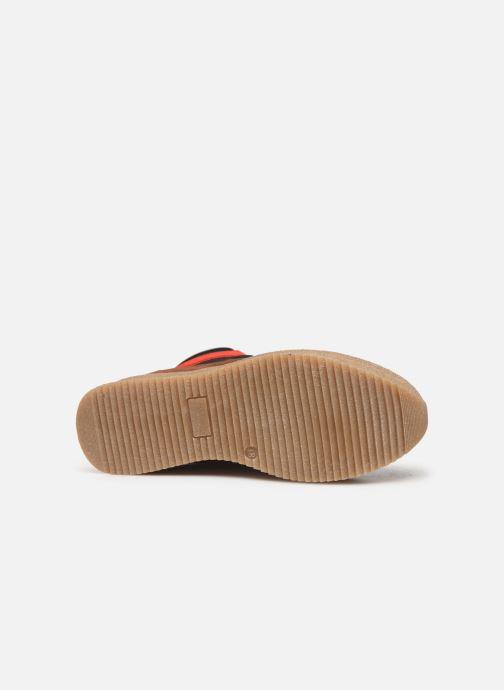 Sneaker Steve Madden PANDORA mehrfarbig ansicht von oben