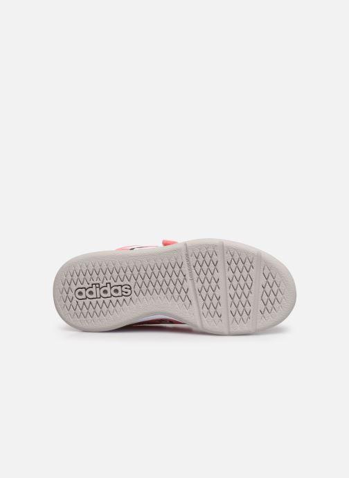 Sneaker adidas performance Tensaur C rosa ansicht von oben