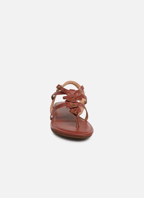 Sandales et nu-pieds Flipflop flor Marron vue portées chaussures