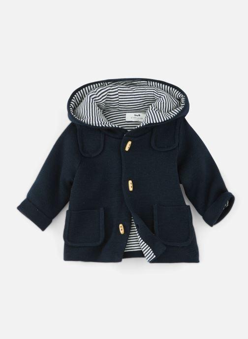 Vêtements Cyrillus Damien Bleu vue détail/paire