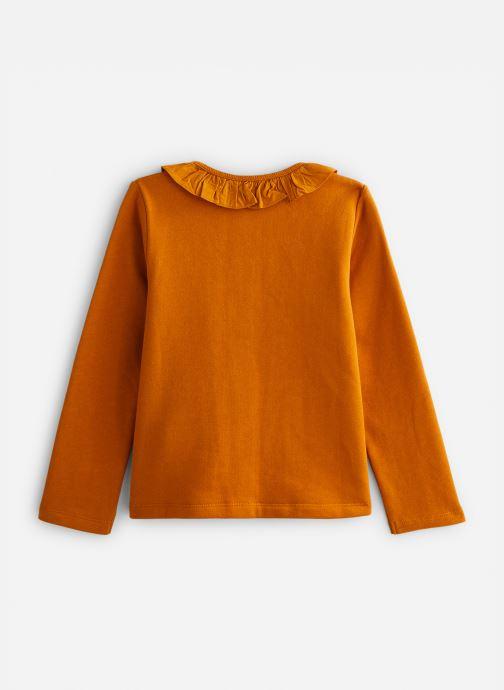 Vêtements Cyrillus Clementine Vert vue bas / vue portée sac