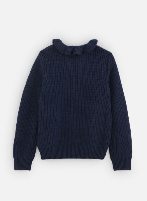 Vêtements Cyrillus Cameron Bleu vue bas / vue portée sac