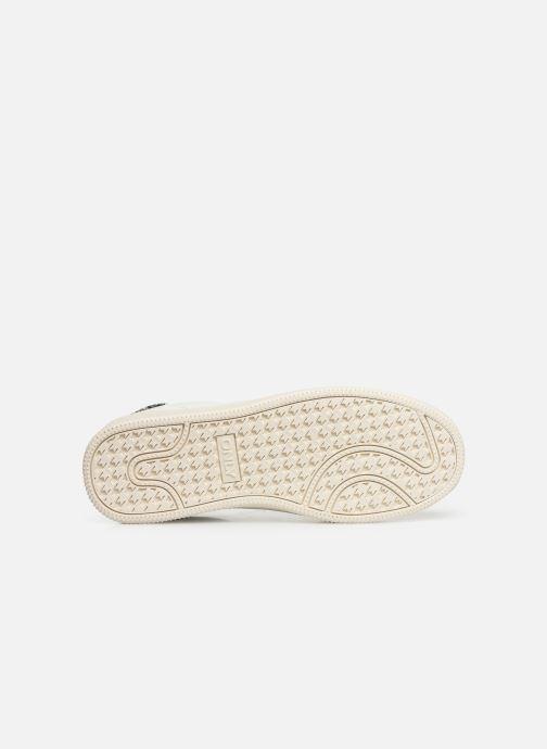 Sneakers ONLY ONLSHILO SNAKE  SNEAKER  15184166 Wit boven