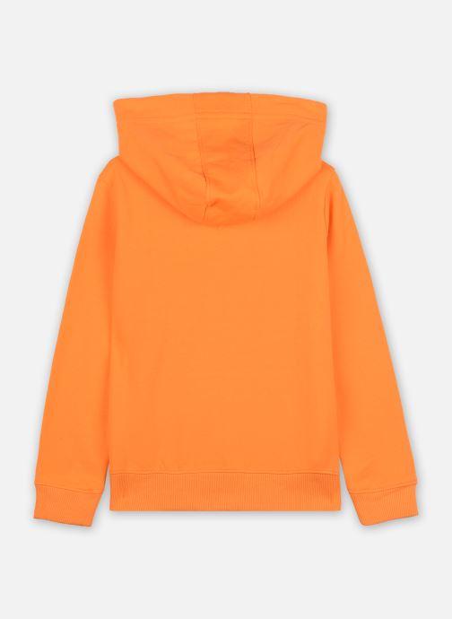Vêtements Tommy Hilfiger Essential Hoodie Orange vue portées chaussures