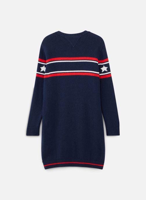 Kleding Tommy Hilfiger Graphic Tommy Star Sweater Dress Blauw onder