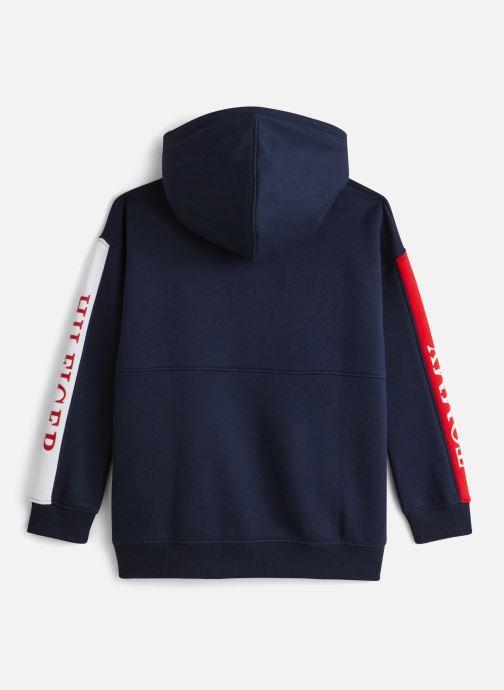 Vêtements Tommy Hilfiger Essential Colorblock Logo Hoodie Bleu vue bas / vue portée sac