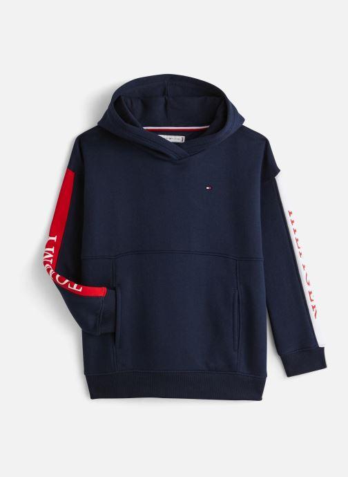 Vêtements Tommy Hilfiger Essential Colorblock Logo Hoodie Bleu vue détail/paire