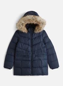 Doudoune - Dg Essential Down Coat