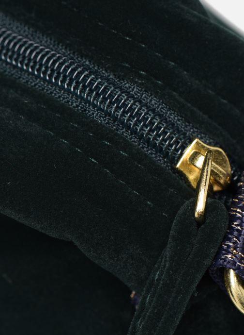 Handbags Bensimon SHINY VELVET SMALL BESACE Green view from the left