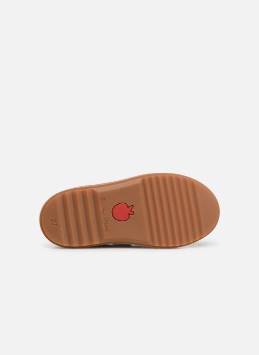 Chaussures à scratch Pom d Api Wouf easy pad Marron vue haut