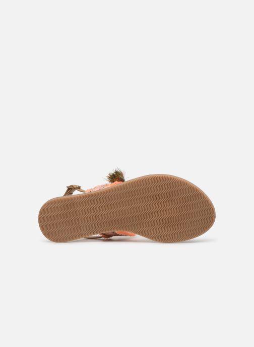Sandali e scarpe aperte Initiale Paris Nessia Marrone immagine dall'alto