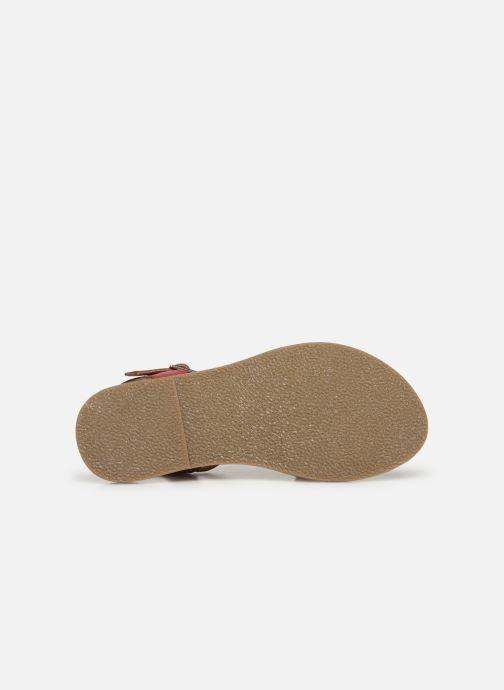 Sandali e scarpe aperte Initiale Paris Ninon Rosa immagine dall'alto