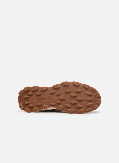 Boots en enkellaarsjes Timberland Brooklyn Sneaker Boot Bruin boven