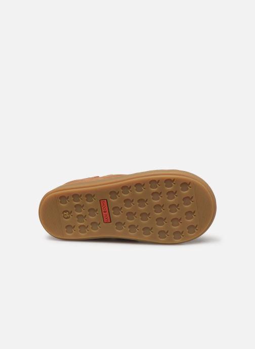Stiefeletten & Boots Shoo Pom Bouba New Apple braun ansicht von oben