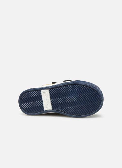 Sneaker Shoo Pom Dude Scratch blau ansicht von oben