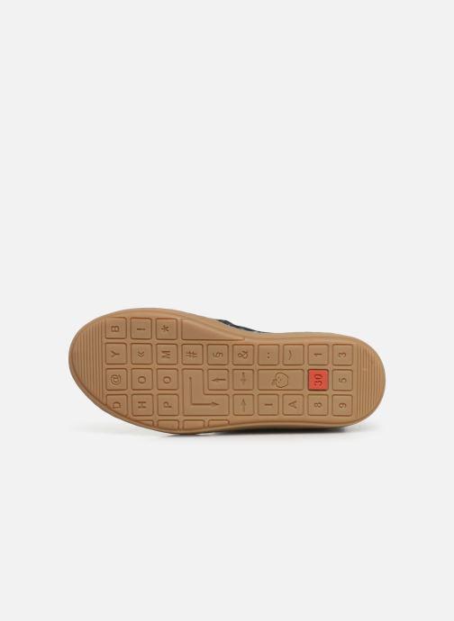 Stiefeletten & Boots Shoo Pom Play Apple blau ansicht von oben