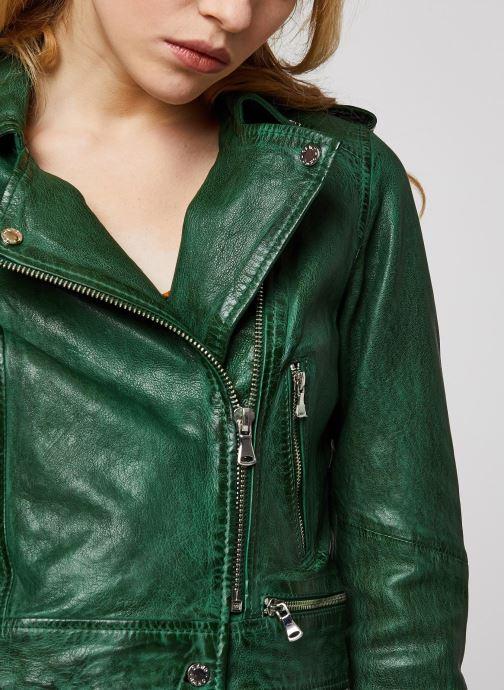 Vêtements Oakwood KYOTO Vert vue face